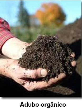 Analise de fertilizante orgânico
